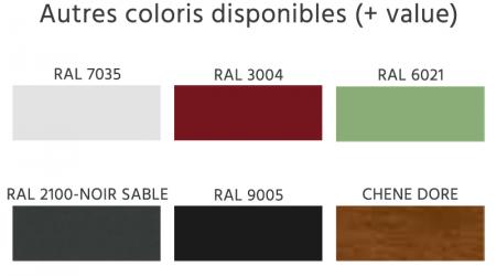 RAL autres coloris