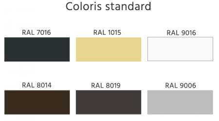 RAL coloris standard